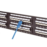 CAT5e Angled-Port Patch Panel