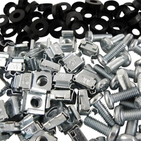 Cage Nuts, Washers and Screws
